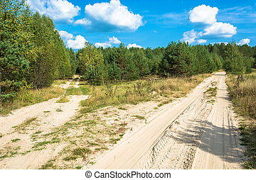 Two forest sandy roads leaving for the forest. - Two forest...