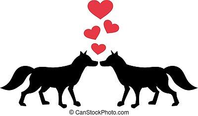 Two fox in love