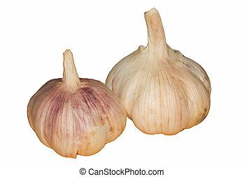 Two Fresh garlic on white background