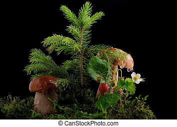 Two fresh porcini mushrooms in a green moss , strawberry, drops