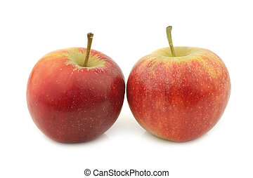 two fresh red and yellow apples