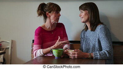 Two Friends Having a Catch up - Two mature friends at their...