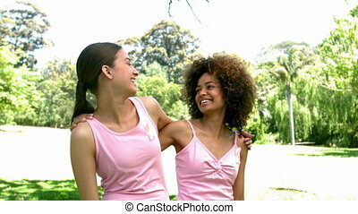 Two friends wearing pink for breast cancer in the park in...