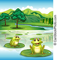 Two frogs above the waterlilies - Illustration of two frogs...