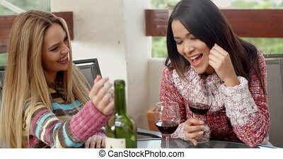Two Girls Having Glasses of Wine at the Cafe