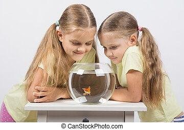 Two girls looking down at a goldfish in an aquarium