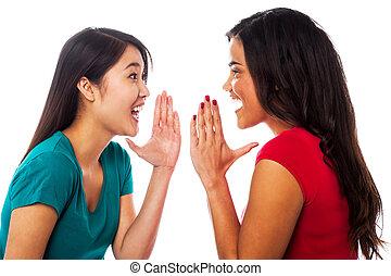 Two girls sharing their secrets