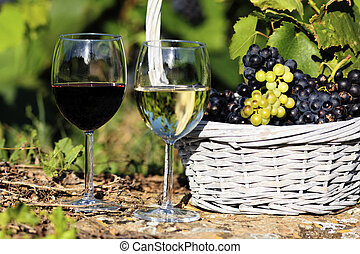 two glasses of wine and grappes in basket