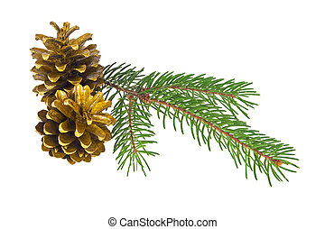 Two golden pine cones with branch on a white background