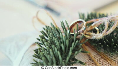 wedding rings on a cushion with fir branches