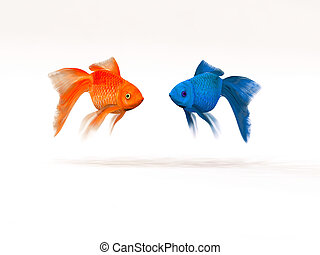 Two goldfish differently.