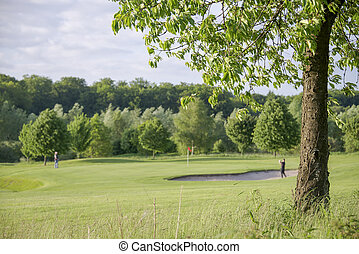 tree on golf course