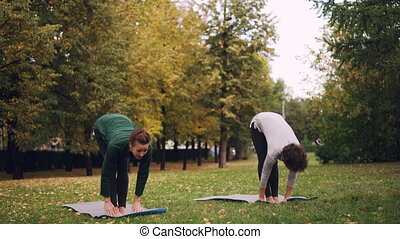 Two good-looking women are doing yoga in park on mats...
