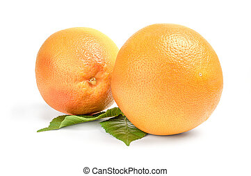 Two grapefruits - isolated on white background