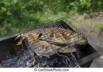Two grilled carp on bbq fireplace