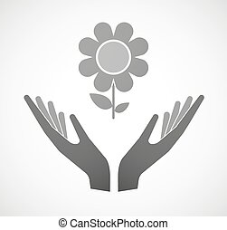 Two hands offering a flower