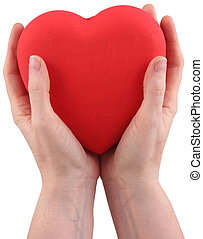 two hands - Two human hands with a red heart