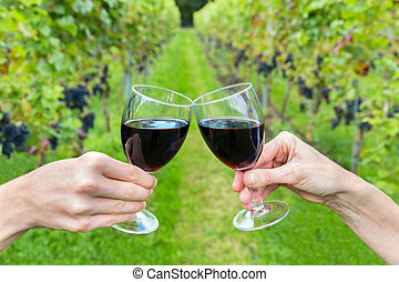 Male and female hand toasting with red wine in path of vineyard with rows of grape plants