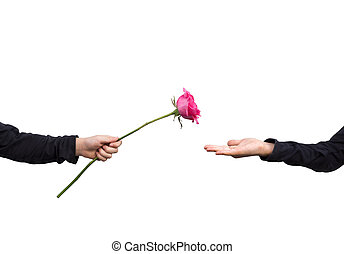 two hands with a beautiful rose,give love concept.