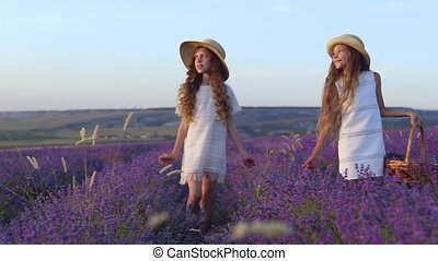 Two happy siblings go on a lavender field for a picnic in...