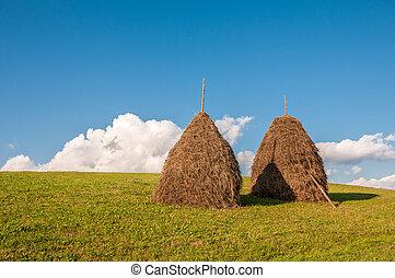Two haystacks on beautiful summer landscape in Carpathian mountain