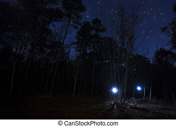 Two headlamps in the forest at night