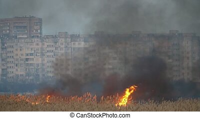 Two hot points of storming flame devouring cane outskirts in...