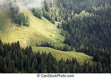 two huts in the bavarian alps surrounded by forest