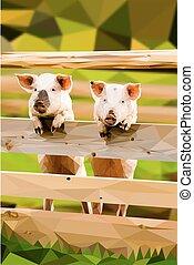 Two joyful pigs