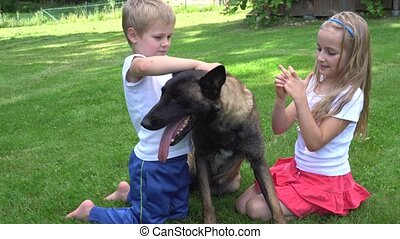 two kids playing with dog outdoors - two kids playing with...
