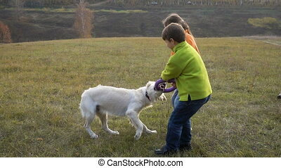 Two kids playing with golden retriever at field - Two kids...