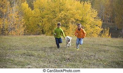 Two kids running with golden retriever on autumn field, slow motion