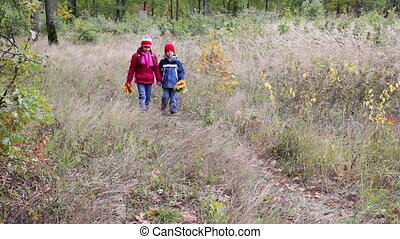 Two kids walking on autumn forest with yellow leaves