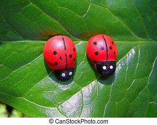 Two ladybugs on the big green leaf