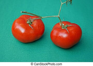 two large ripe red tomatoes on a branch