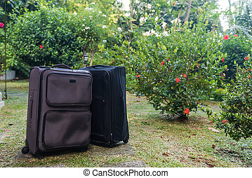 Two large travel suitcases on a green lawn