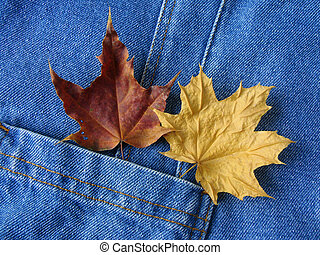 two leaves in pocket