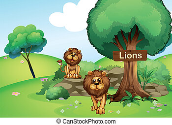 Two lions at the forest with a wooden signboard