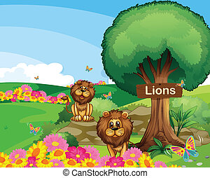Two lions in the garden with a wooden signboard - ...