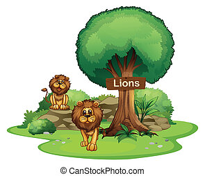Two lions with a wooden signboard