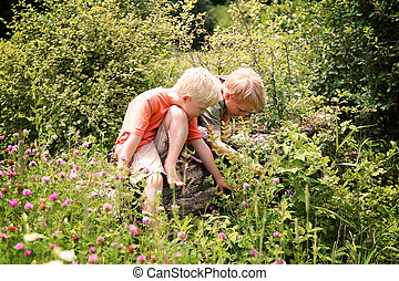Two Little Boys Expliring in the Flower Meadow by the Woods