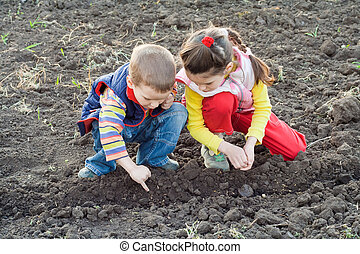 Two little children planting seeds on the field