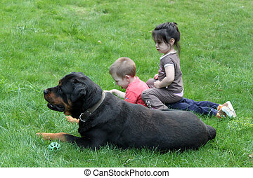 Two little children with dog