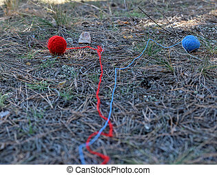 two little wool ball unwound in the middle of the forest