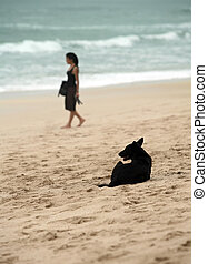 Two loneliness - Black dog and the lonely girl at coast