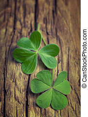Two lucky clovers on a vintage wood background