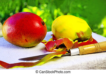 Two mangoes fruits and knife.