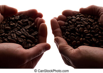 Two man's hand a handful of coffee beans - silhouette