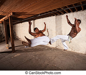 Two Martial Artists in Mid-air