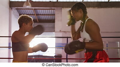 Two mixed race women training in boxing ring - Side view ...